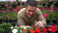 Friendly worker checking a flower plants at the garden center