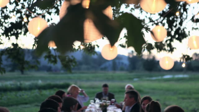 TD MS Friends and family dining outside in field under tree with lanterns at sunset/Washington, USA
