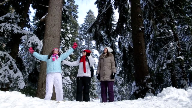 Friends enjoy on winter vacation