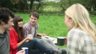Friends in a field, toasting with mugs and drinking