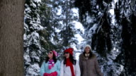 Friends talking in amazing winter forest ambient