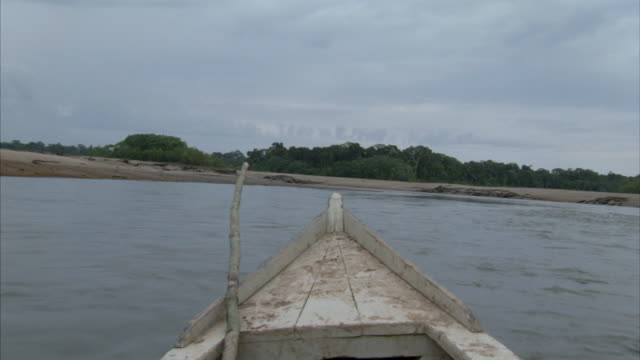 MS POV From prow of canoe moving through river / ChaparrÌ_ Ecological Reserve, N/A, Peru