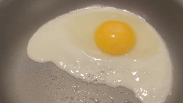 Front View Egg Cooking in Pan