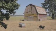Front View of Rural Run Down Barn