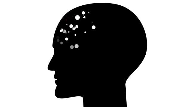BRAIN : frontal lobe, white back (LOOP)