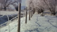 MS, R/F, Frost covered fence and trees, New Mexico, USA