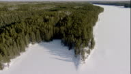 A frozen inlet borders a boreal forest in Canada. Available in HD.