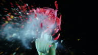 SLO MO Frozen red tulip exploding