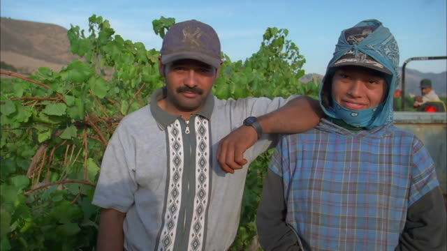 Fruit pickers wearing baseball caps smile looking into camera, California Available in HD.