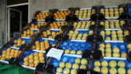 MS PAN Fruits for sale in store / Lipari, Sicily, Italy