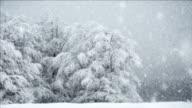 Full HD NTSC -  Snow Fall Seamless Loop