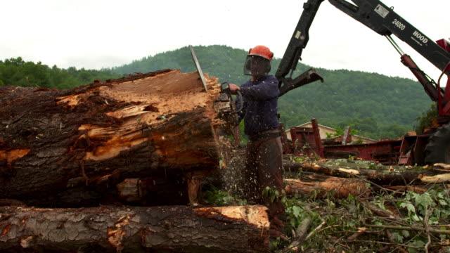 Full shot of man sawing a log.