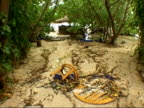 MS furniture scattered around ground under trees on beach caused by tsunami, Thailand