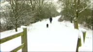 transport disruption Unidentified Location Woman along snowy country path with pet dog WALES Brecon Beacons General view of countryside valley and...