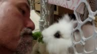 Fuzzy the rabbit enjoys some lettuce delivered straight from the mouth of its owner Now that is trust Credit to 'boomerangsbyVic'