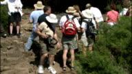 general views wildlife on Santa Cruz Tortoise along PAN up to group of tourists / Tortoise walking through tourist group / More of tourists /...