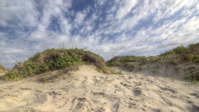 Galveston, Texas di duna di sabbia