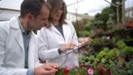 Garden center workers comparing species to the ones on tablet