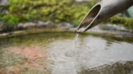 CU Garden of temple and water is flowing at Yosen temple / Fukuchiyama, Kyoto, Japan