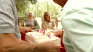 SLOW MOTION - Garden Party Cake Mature Couples.
