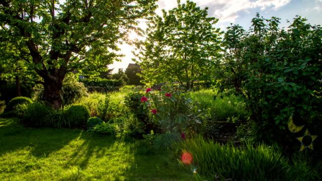 CRANE UP: Garden