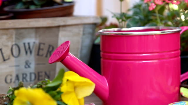 Gardening tools: watering can, flowers, gloves, spade, soil. Spring in the garden concept layout with free text space.