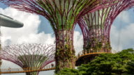 Gardens by the Bay elevated walkway close