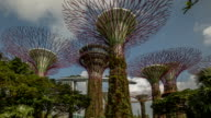 Gardens by the Bay elevated walkway wide