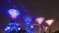 WS T/L Gardens by the bay, Super tree grove at dusk / Singapore