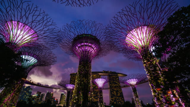 Gardens by the Bay, Supertree Grove, Singapore