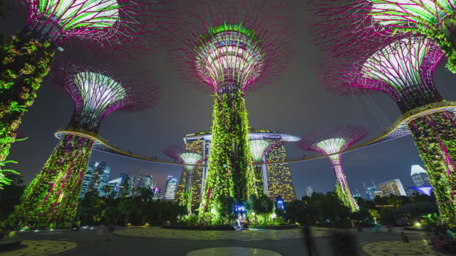 T/L Gardens By The Bay Supertrees light show with Marina Bay Sands behind - Singapore