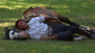 MS Gaucho and horse resting on field, Argentina