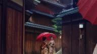 Geisha Maiko Walking Outdoor Gion Animated Photo Slow Motion 4K