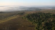 General view of the Amazon forest plus cattle ranch in the outskirts of Rio Branco Acre Brazil 2 General view Amazon forest cut by a strip of...
