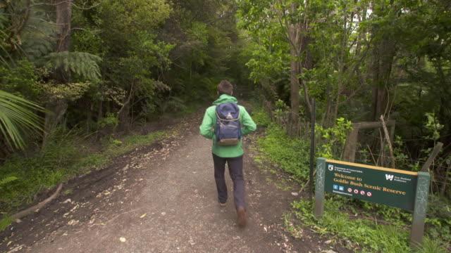 General views of Mokoroa Falls in Waitakere Ranges Regional Park