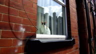 General Views of traditional backtoback terraced homes in Leeds on July 28 Leeds United Kingdom
