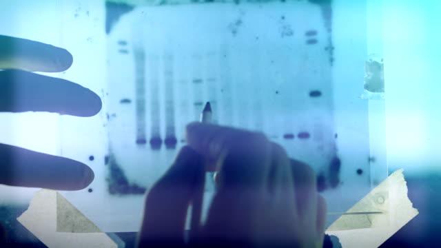 DNA genetische analyseresultaten