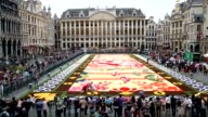 A giant flower carpet made of 600000 begonias and dahlias on a 75 metrelong and 24 metrewide area is displayed at the Grand Place in Brussels Belgium...