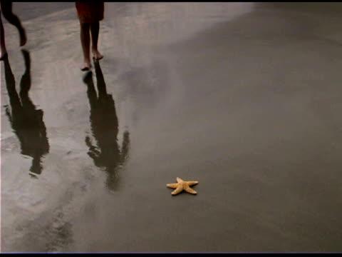 Girl and boy with starfish on beach
