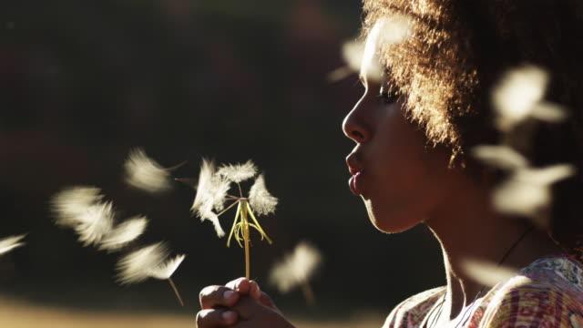 CU TU Girl (12-13) blowing dandelion standing in field / South Fork, Utah, USA