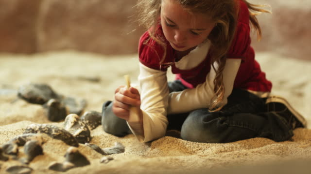 MS TU TD Girl (8-9) brushing sand from fossils at excavation site in natural history museum, Lehi, Utah, USA