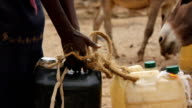 Girl carrying gallons of water to donkey on August 02 2011 in Road from Garisa to Dadaab Kenya
