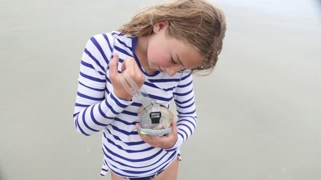 girl collecting sea shells