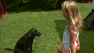 WS ZO Girl (8-9) feeding black Labrador and stroking in playground / Stowe, Vermont, USA