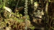 Girl finds a well in fairy tale garden
