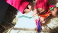 CU Girl gently peirces ear of llama with ribbon in traditional ceremony / Angostura, Chile