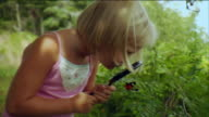 CU Girl looking through magnifying glass at butterfly in bush / Vinalhaven, Maine, USA
