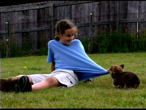 Girl playing with corgi puppies