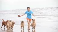 Mädchen spielt mit Golden Retriever auf den Strand