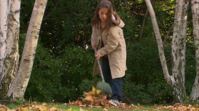 MS, Girl (10-11) raking leaves in garden, Los Angeles, California, USA